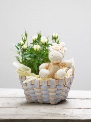 White Rose Baby Basket