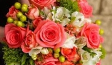 How to Know You Are at the Right Florists When Buying Flowers Cults