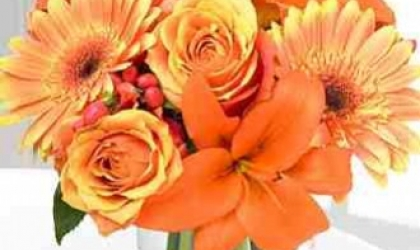 Why Florists in Cults Are So Popular for Summer Flowers