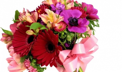 Choose the Best Flowers in Summer from Florists Cults