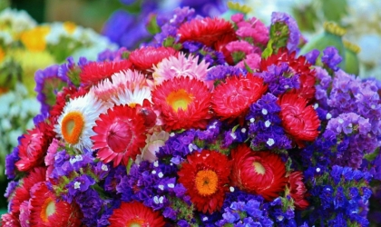 Hiring Right Cults Flower Delivery Service Providers